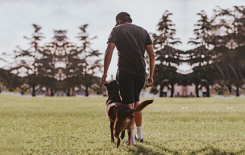 dog trainer walking in field with his dog.