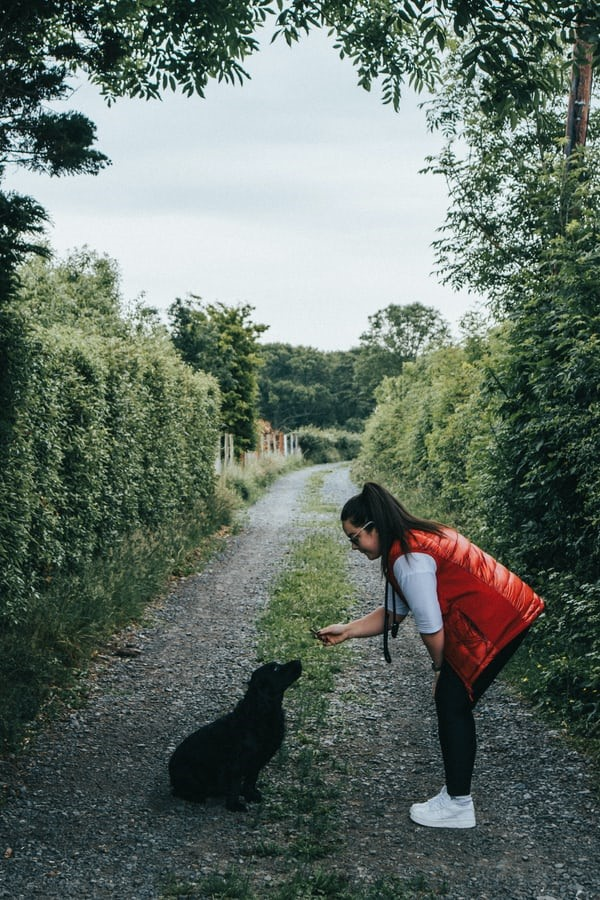 A girl giving a treat to a dog