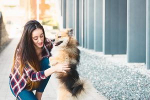 A woman appreciating dog in positive reinforcement training