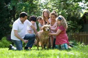 The best dog breed for kids and families